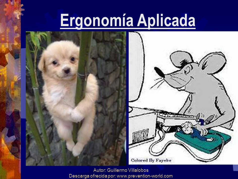 Ergonomía Aplicada Autor: Guillermo Villalobos Descarga ofrecida por: www.prevention-world.com