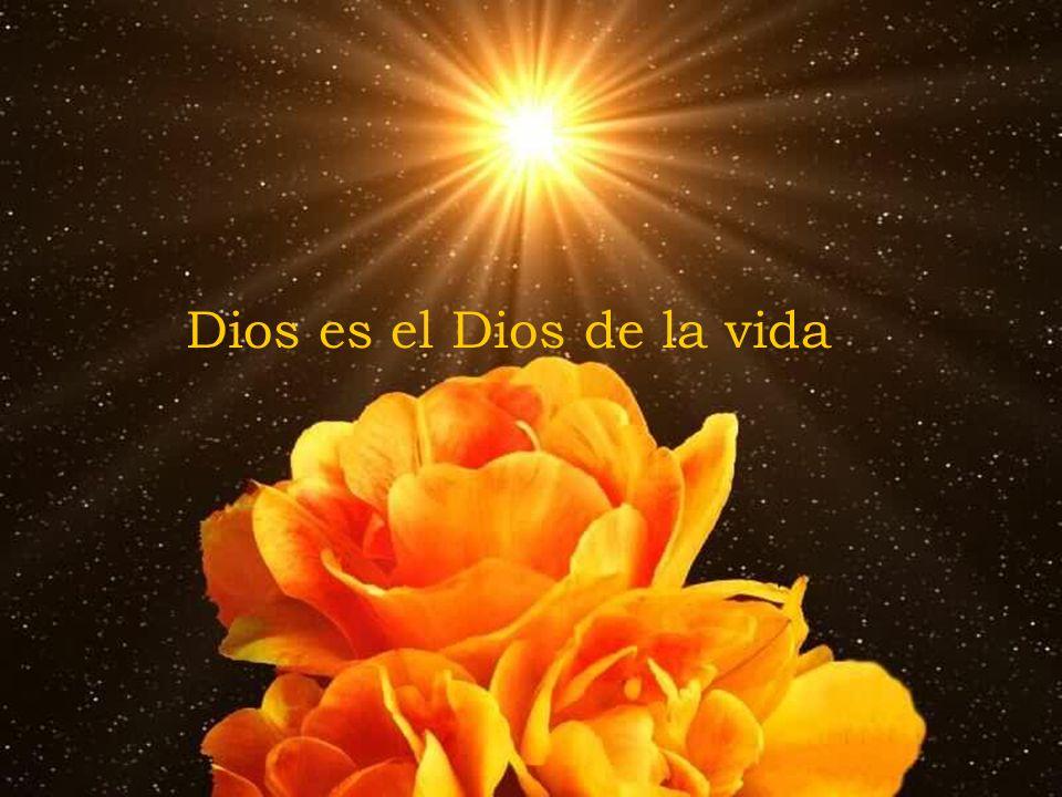 Dios es el Dios de la vida