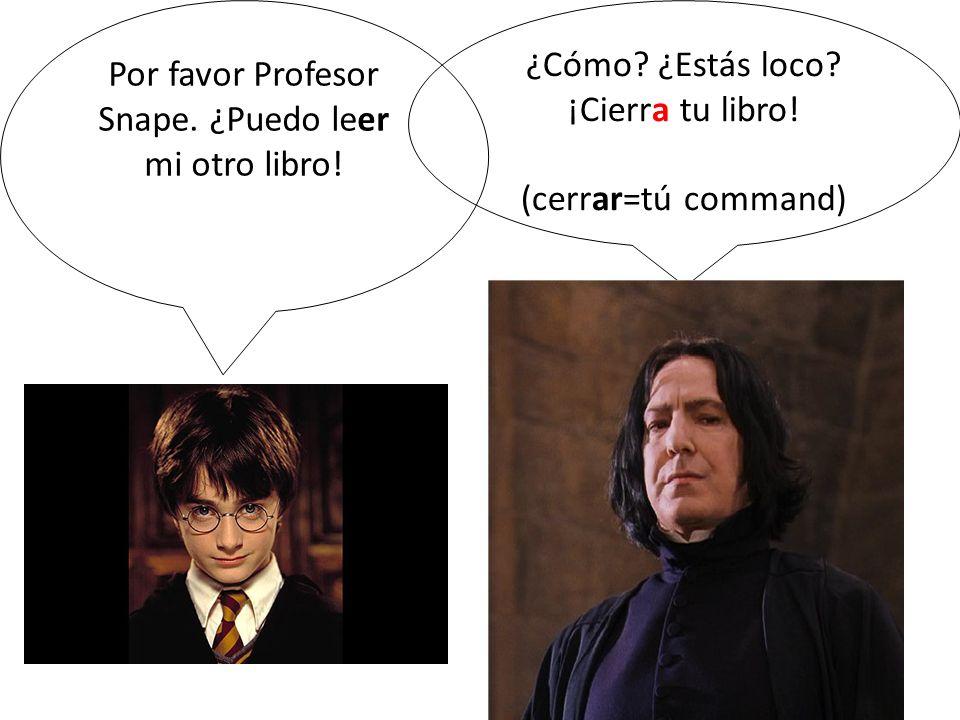 Por favor Profesor Snape. ¿Puedo leer mi otro libro!