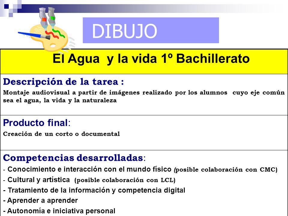 DIBUJO El Agua y la vida 1º Bachillerato Descripción de la tarea :