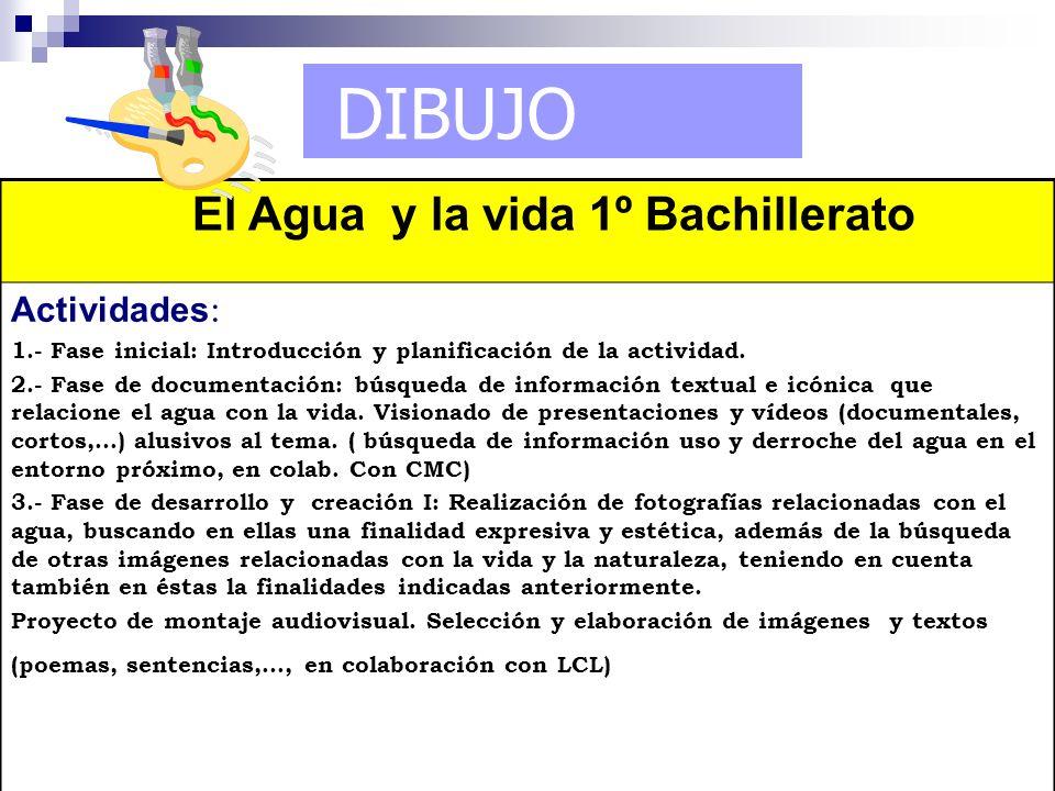 DIBUJO El Agua y la vida 1º Bachillerato Actividades: