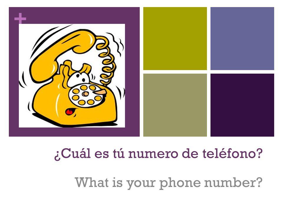 ¿Cuál es tú numero de teléfono