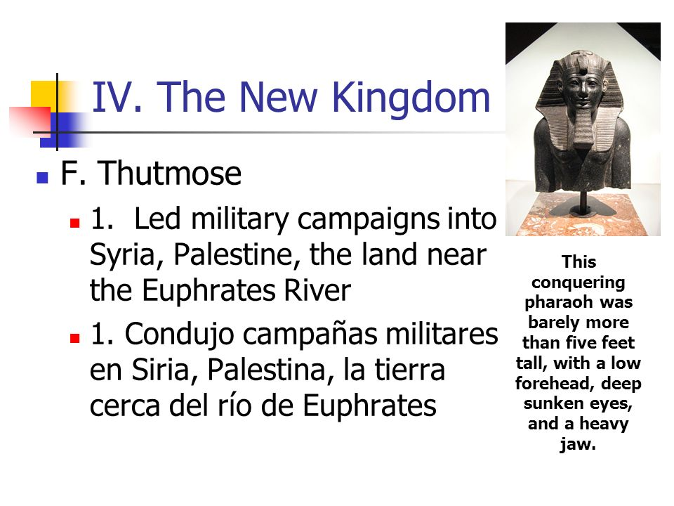 IV. The New Kingdom F. Thutmose