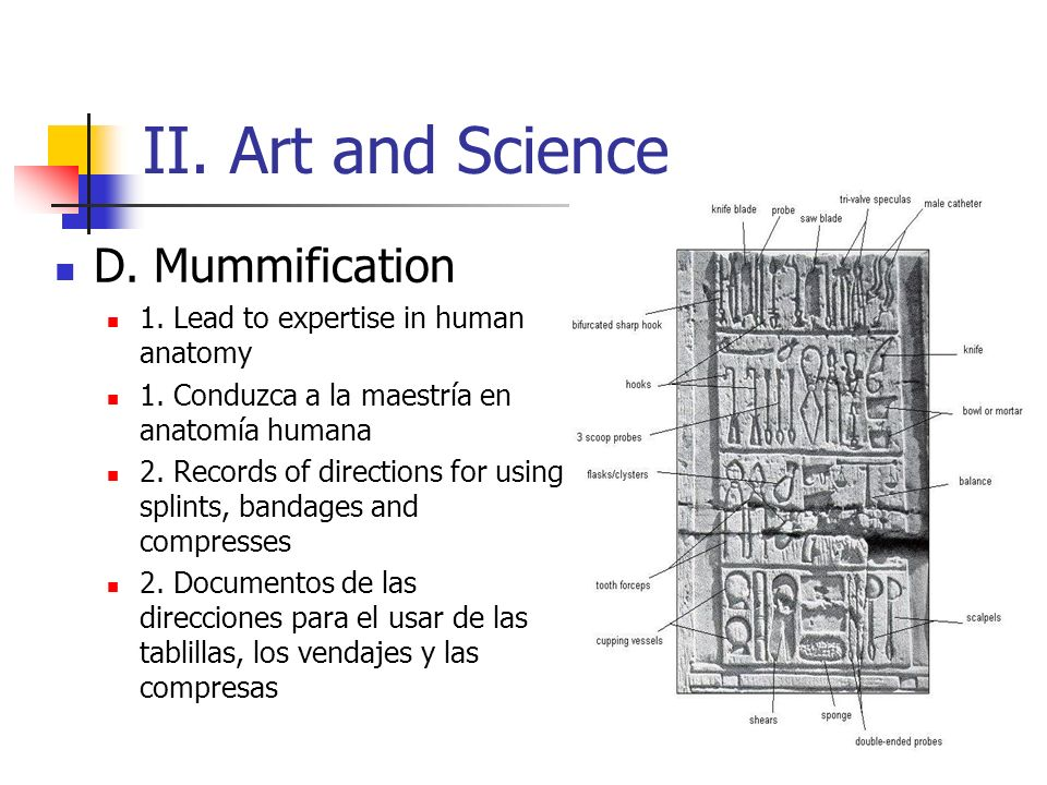 II. Art and Science D. Mummification