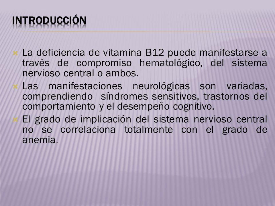 Introducción La deficiencia de vitamina B12 puede manifestarse a través de compromiso hematológico, del sistema nervioso central o ambos.