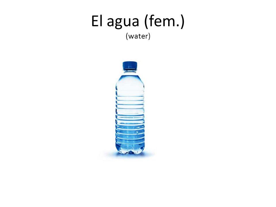 El agua (fem.) (water)