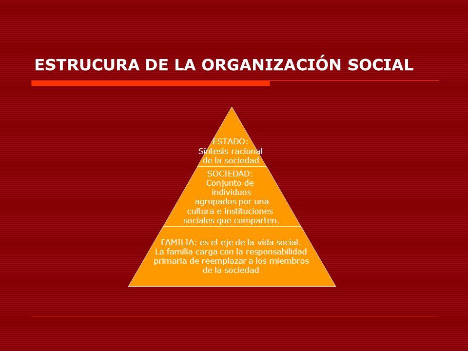 ESTRUCURA DE LA ORGANIZACIÓN SOCIAL