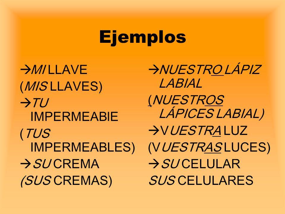 Ejemplos MI LLAVE (MIS LLAVES) TU IMPERMEABlE (TUS IMPERMEABLES)