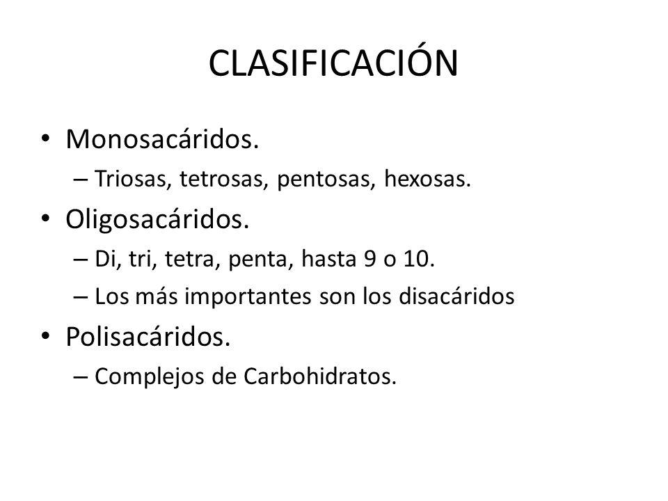 CLASIFICACIÓN Monosacáridos. Oligosacáridos. Polisacáridos.
