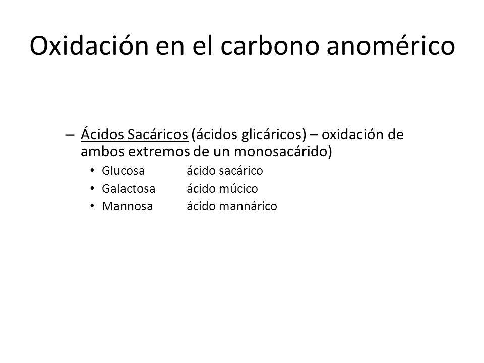 Oxidación en el carbono anomérico