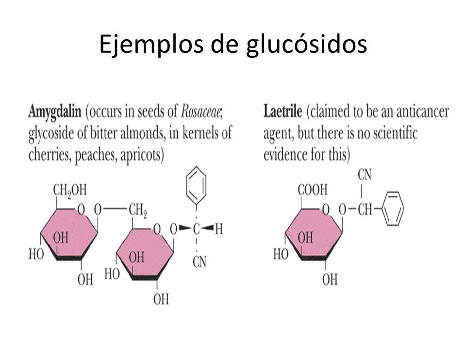 Ejemplos de glucósidos