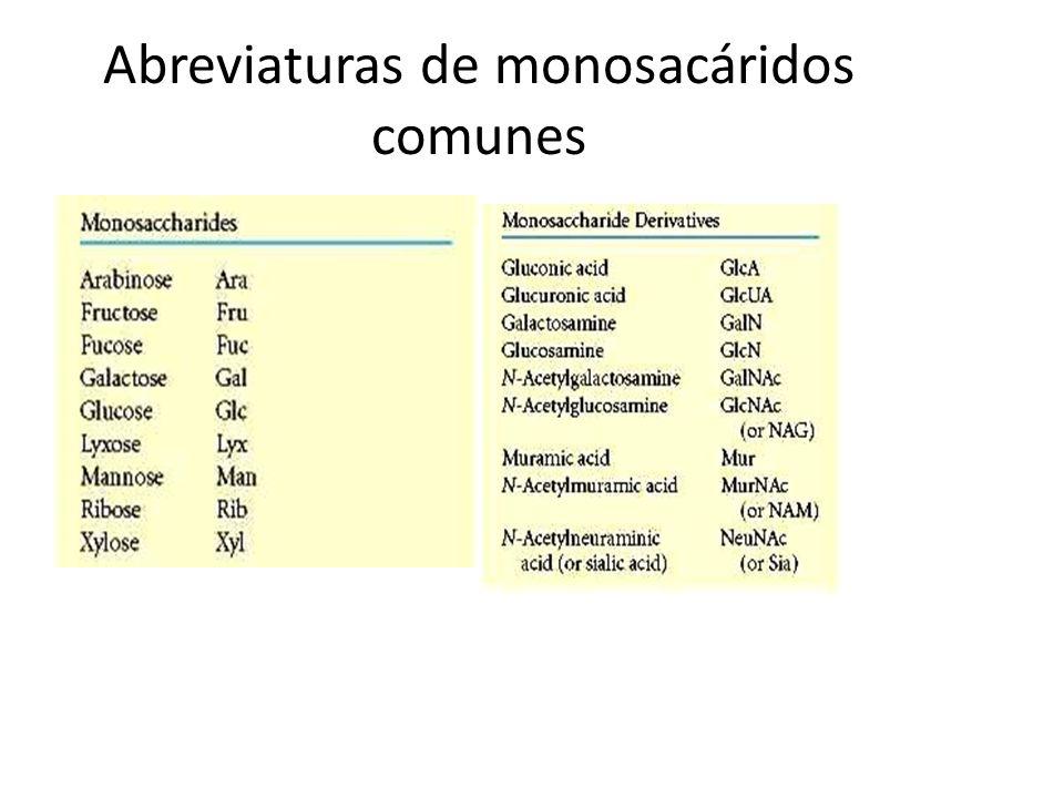 Abreviaturas de monosacáridos comunes