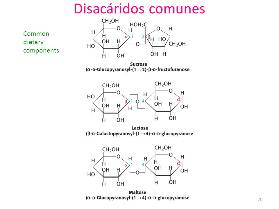Disacáridos comunes Common dietary components