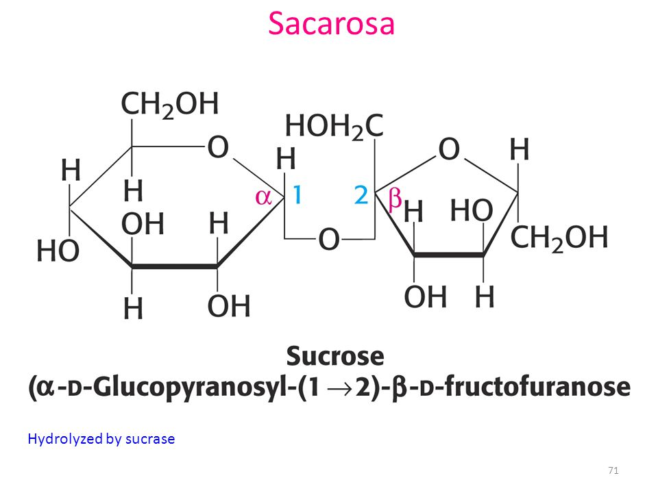 Sacarosa Hydrolyzed by sucrase
