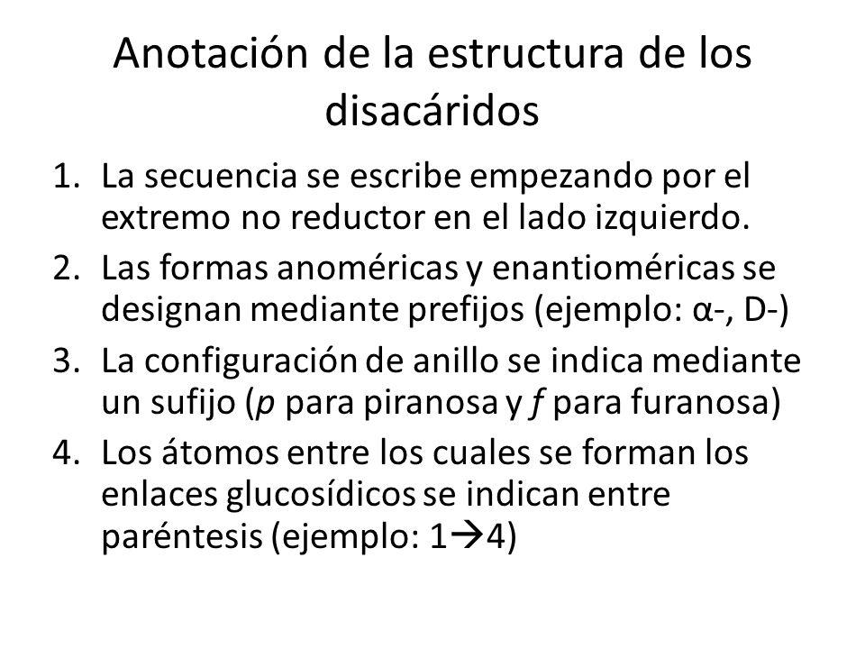 Anotación de la estructura de los disacáridos