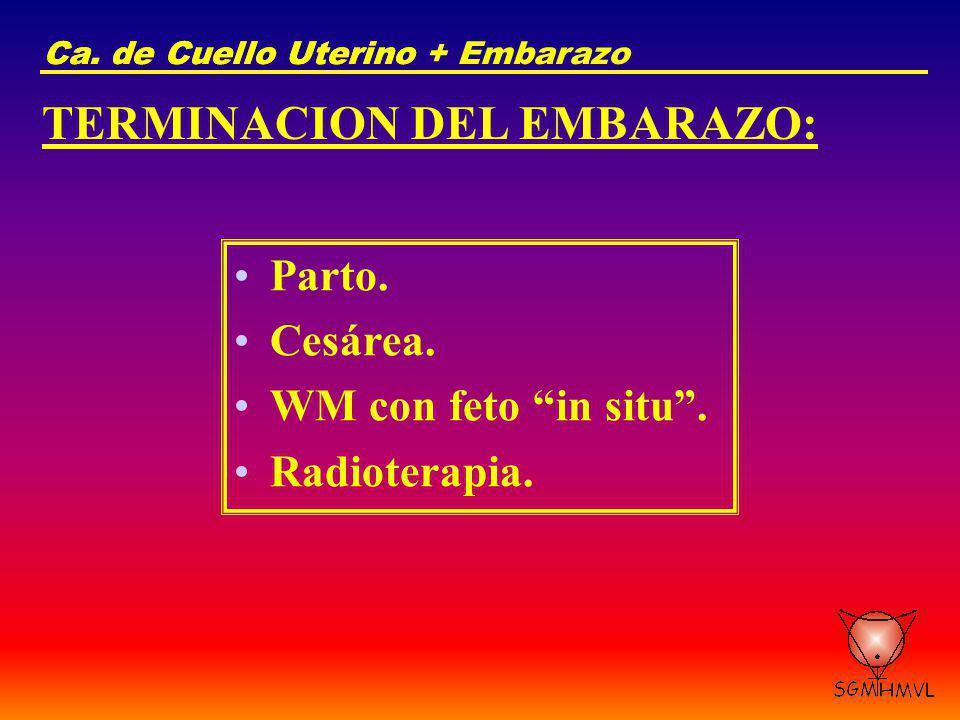 TERMINACION DEL EMBARAZO:
