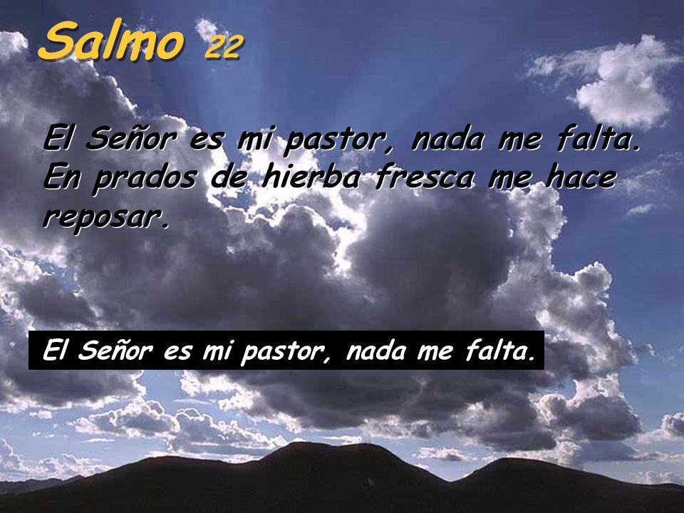 Salmo 22 El Señor es mi pastor, nada me falta. En prados de hierba fresca me hace reposar.