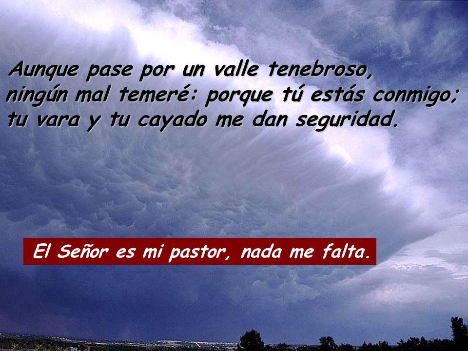 Aunque pase por un valle tenebroso, ningún mal temeré: porque tú estás conmigo; tu vara y tu cayado me dan seguridad.