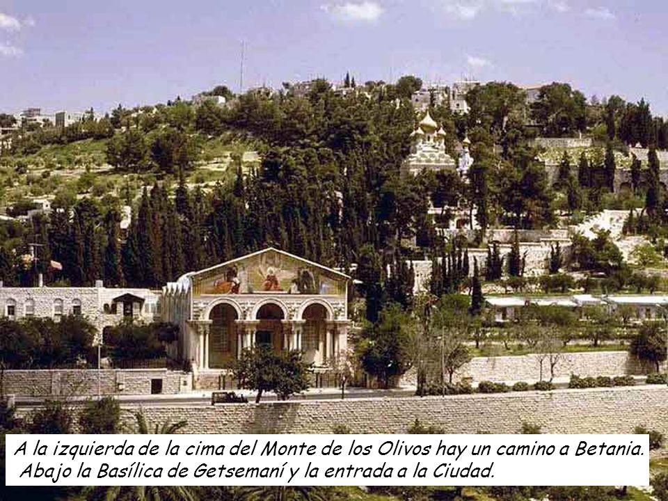 A la izquierda de la cima del Monte de los Olivos hay un camino a Betania.