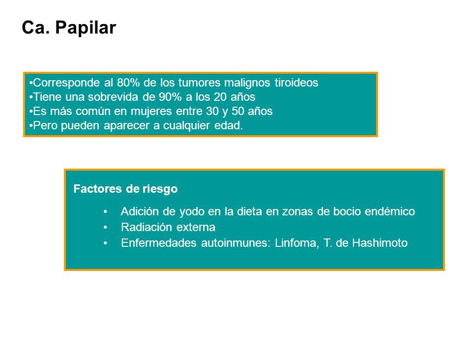 Ca. Papilar Corresponde al 80% de los tumores malignos tiroideos