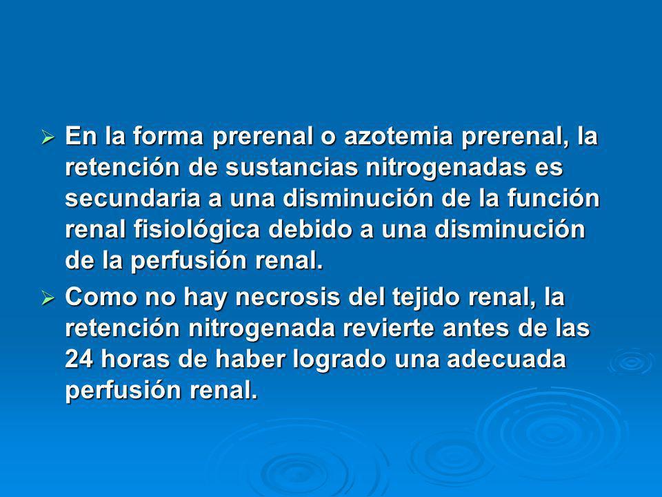 En la forma prerenal o azotemia prerenal, la retención de sustancias nitrogenadas es secundaria a una disminución de la función renal fisiológica debido a una disminución de la perfusión renal.