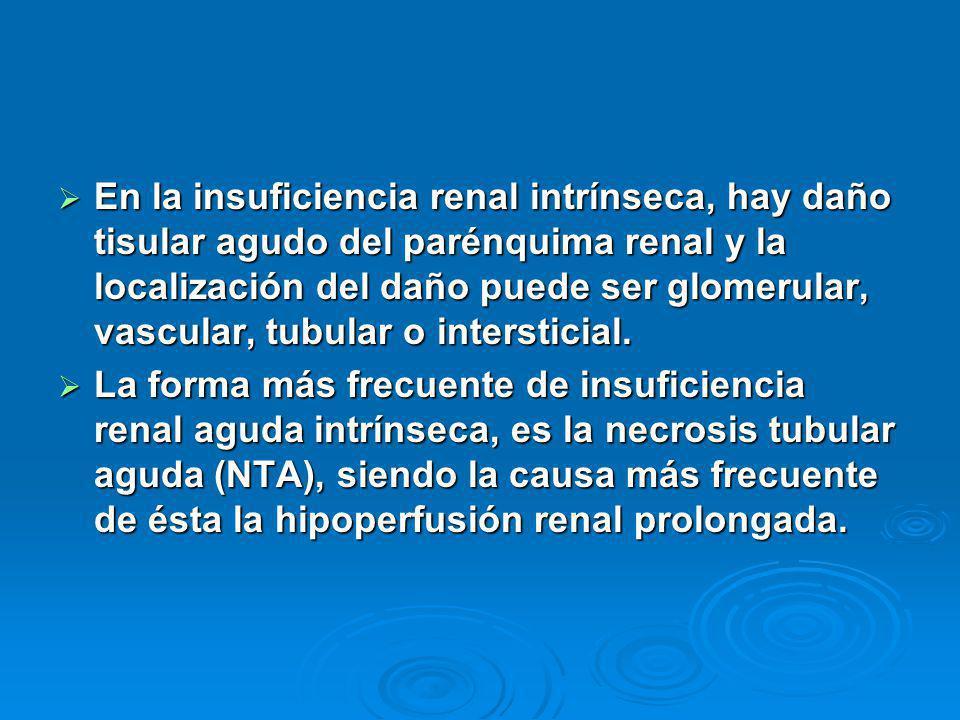 En la insuficiencia renal intrínseca, hay daño tisular agudo del parénquima renal y la localización del daño puede ser glomerular, vascular, tubular o intersticial.