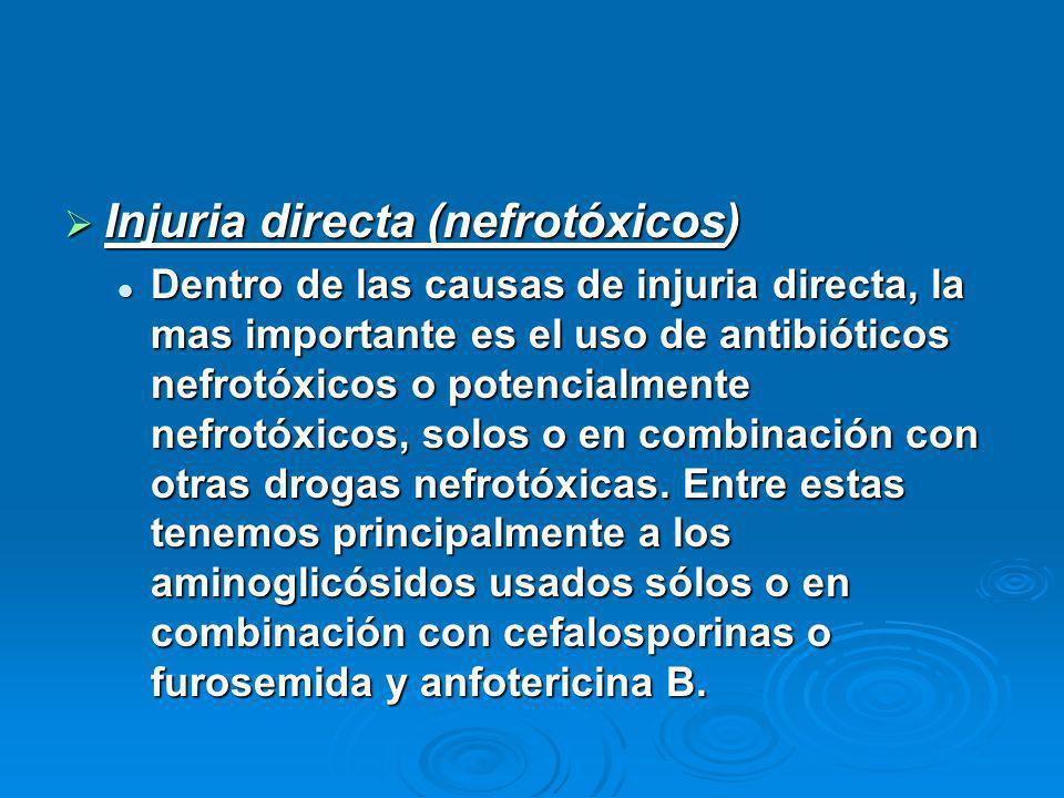 Injuria directa (nefrotóxicos)