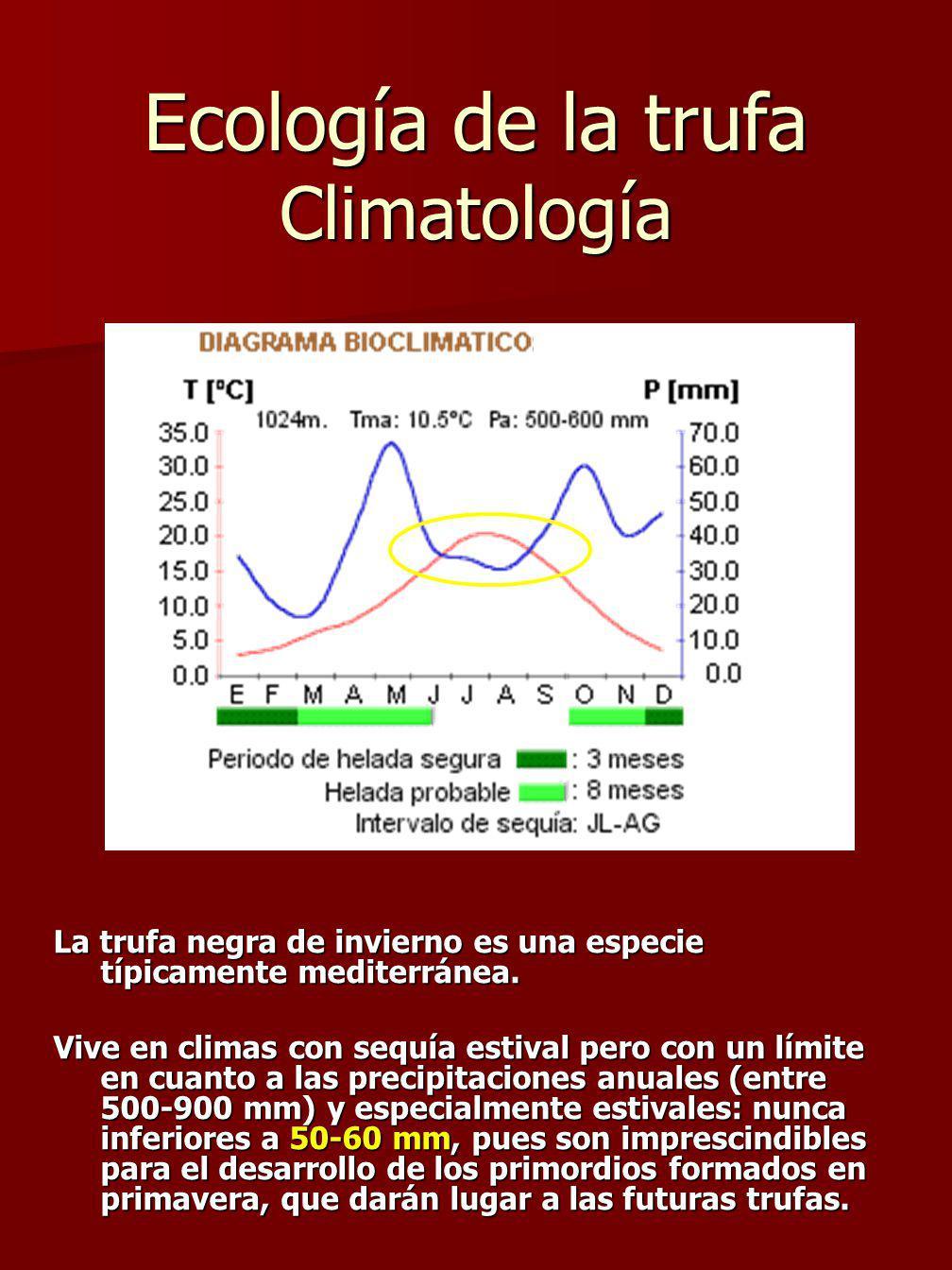 Ecología de la trufa Climatología