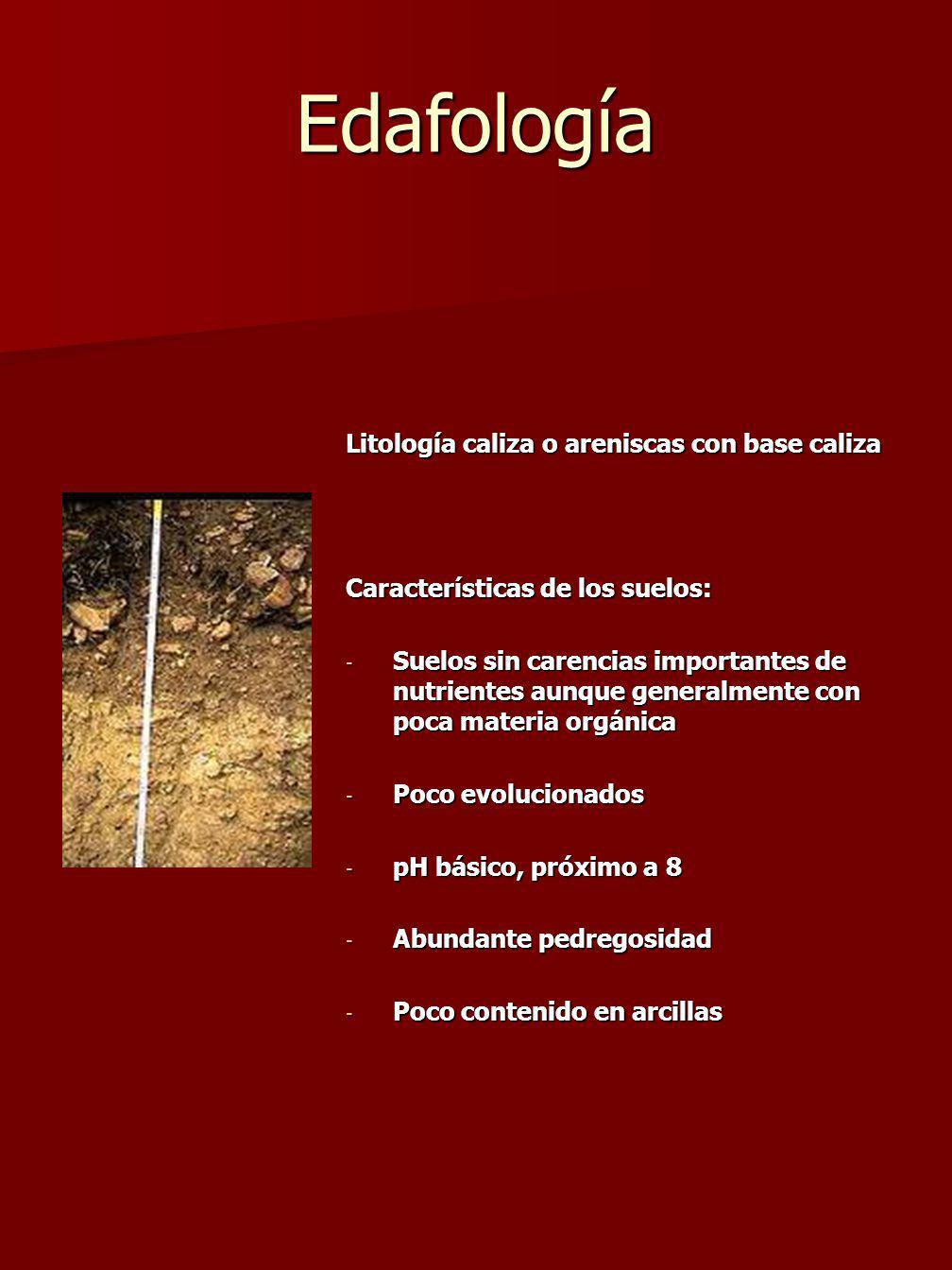 Edafología Litología caliza o areniscas con base caliza