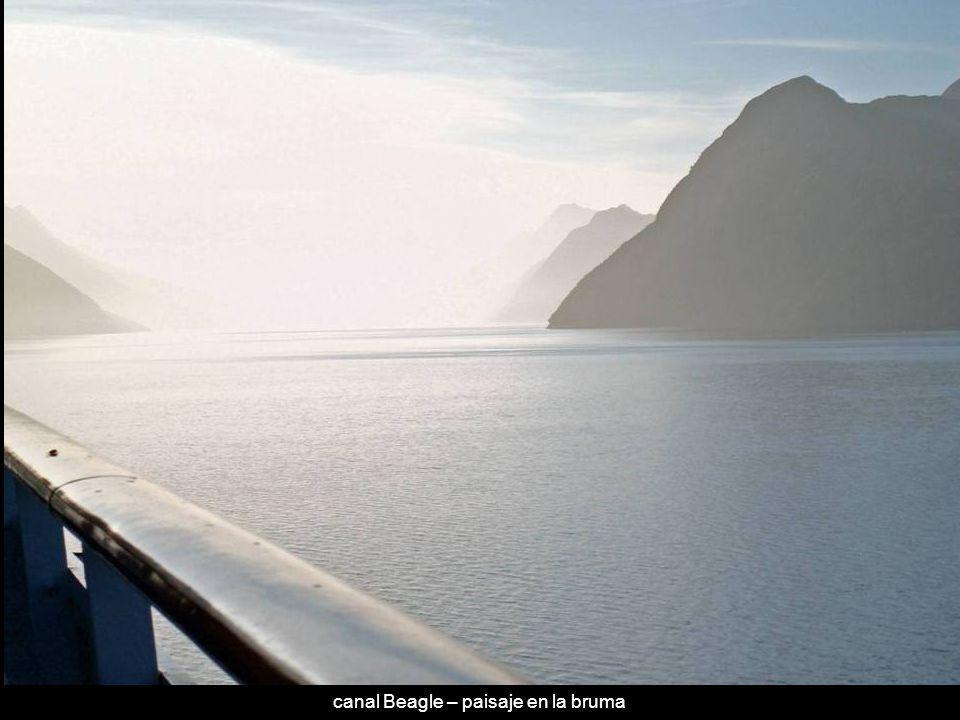 canal Beagle – paisaje en la bruma