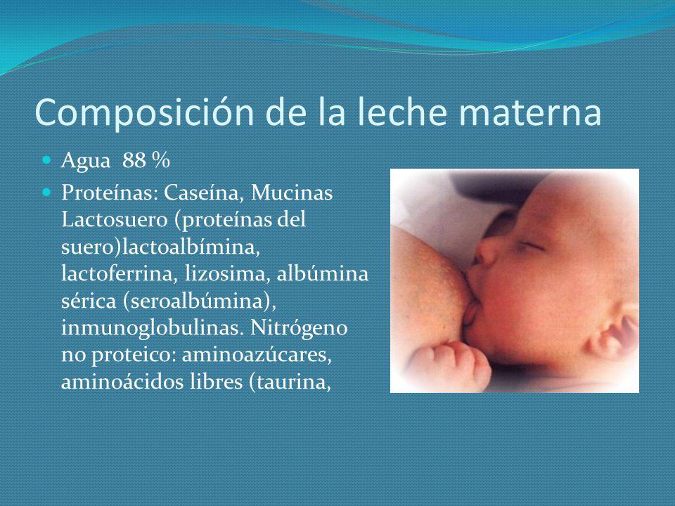 Composición de la leche materna