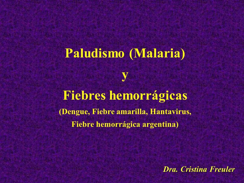 (Dengue, Fiebre amarilla, Hantavirus, Fiebre hemorrágica argentina)