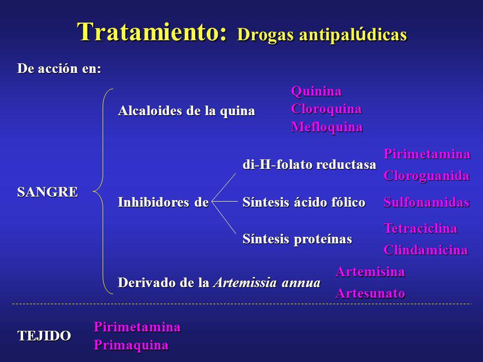 Tratamiento: Drogas antipalúdicas