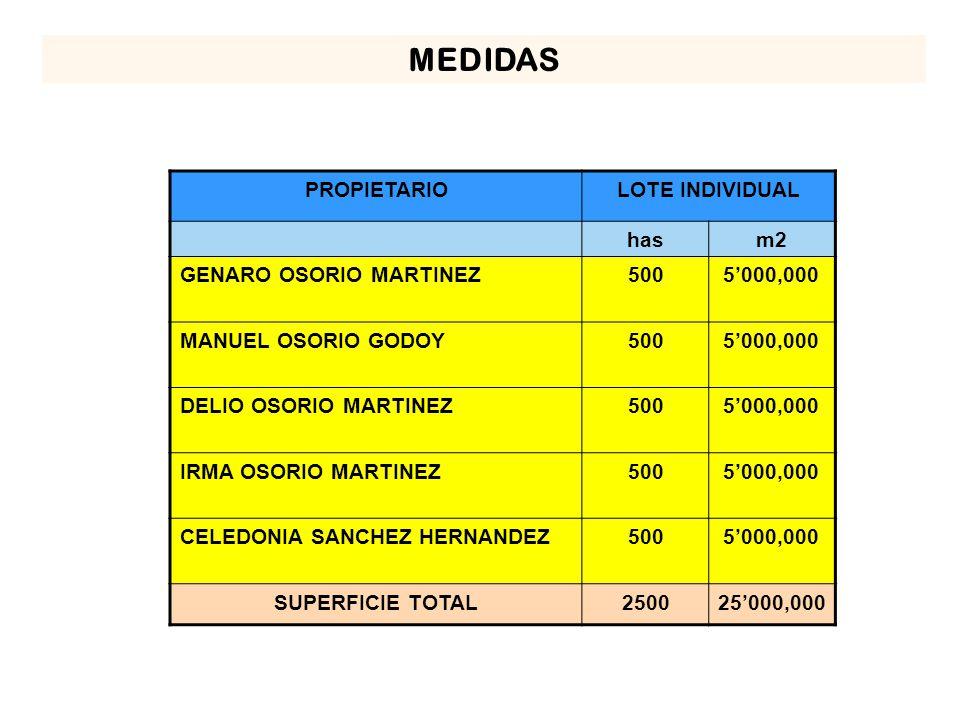 MEDIDAS PROPIETARIO LOTE INDIVIDUAL has m2 GENARO OSORIO MARTINEZ 500