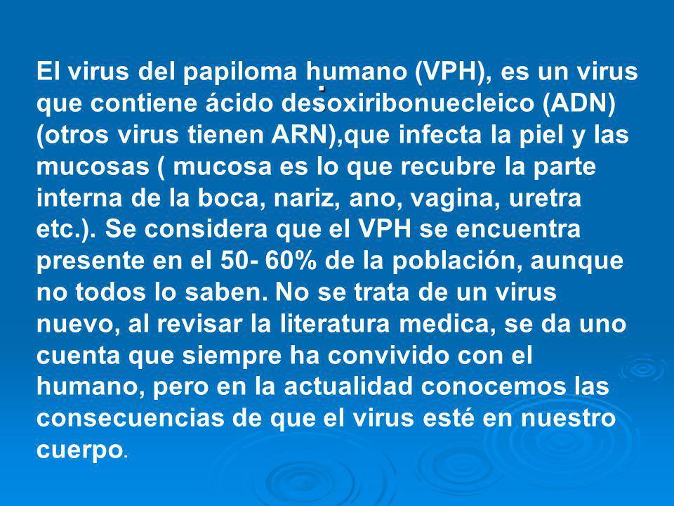 El virus del papiloma humano (VPH), es un virus que contiene ácido desoxiribonuecleico (ADN) (otros virus tienen ARN),que infecta la piel y las mucosas ( mucosa es lo que recubre la parte interna de la boca, nariz, ano, vagina, uretra etc.). Se considera que el VPH se encuentra presente en el 50- 60% de la población, aunque no todos lo saben. No se trata de un virus nuevo, al revisar la literatura medica, se da uno cuenta que siempre ha convivido con el humano, pero en la actualidad conocemos las consecuencias de que el virus esté en nuestro cuerpo.