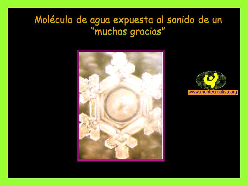 Molécula de agua expuesta al sonido de un muchas gracias