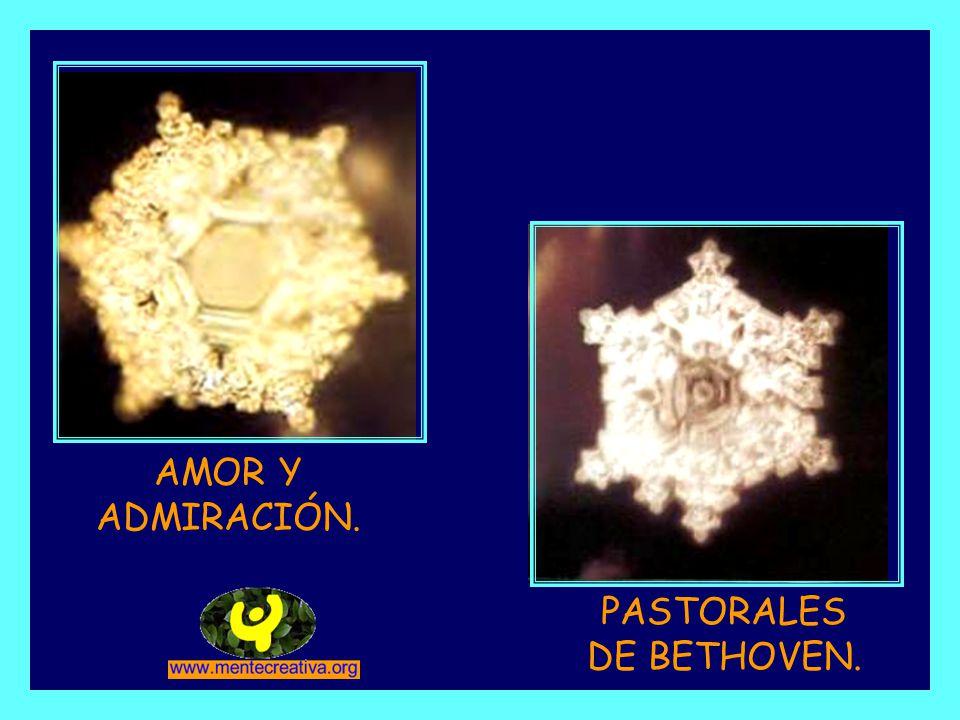 PASTORALES DE BETHOVEN.
