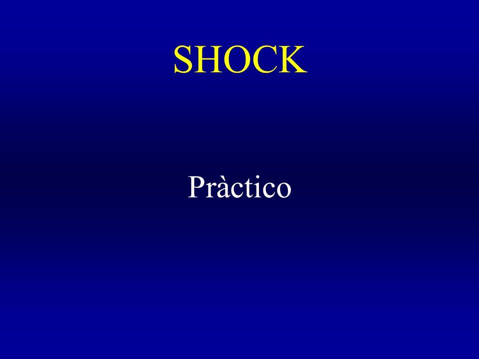 SHOCK Pràctico
