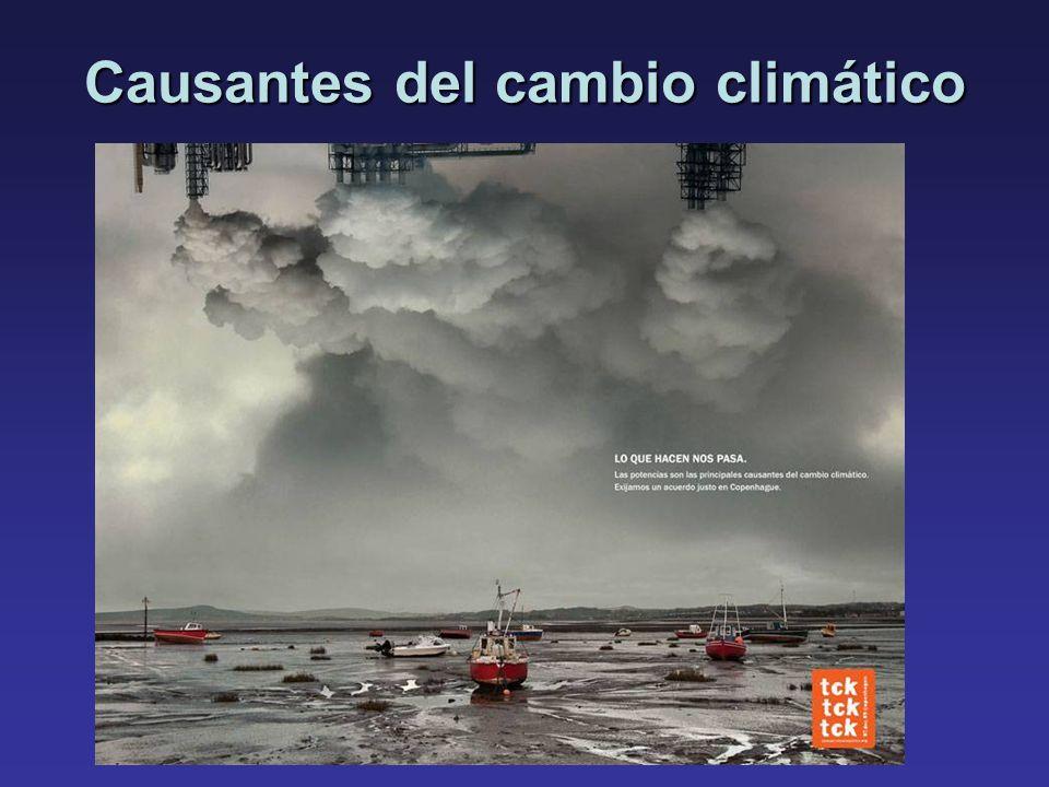 Causantes del cambio climático