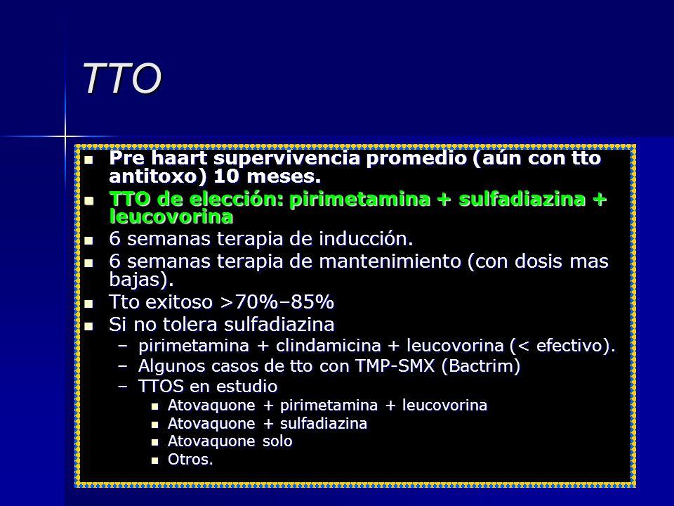TTO Pre haart supervivencia promedio (aún con tto antitoxo) 10 meses.