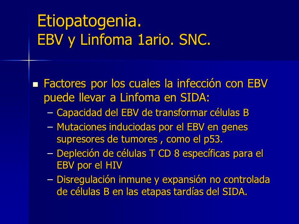 Etiopatogenia. EBV y Linfoma 1ario. SNC.
