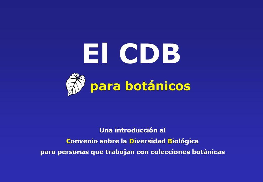El CDB para botánicos Una introducción al