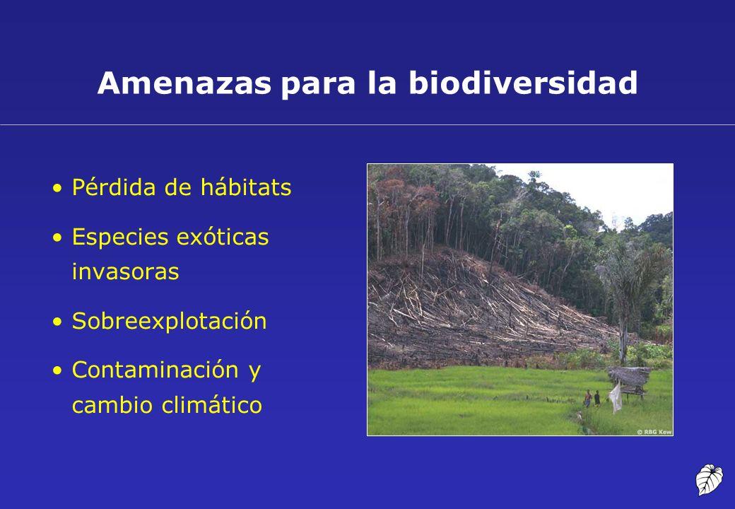Amenazas para la biodiversidad