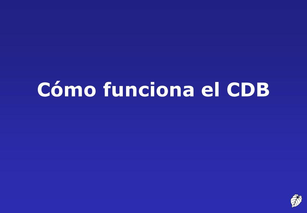 Cómo funciona el CDB 14 Cómo funciona el CDB