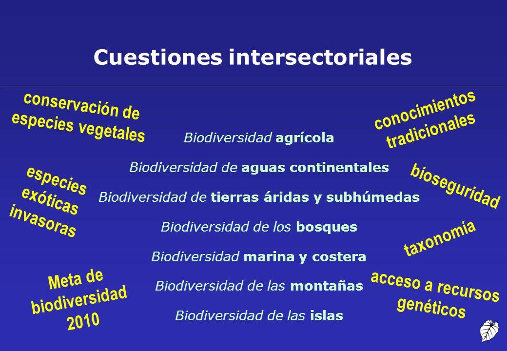 Cuestiones intersectoriales