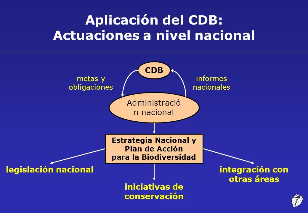 Aplicación del CDB: Actuaciones a nivel nacional