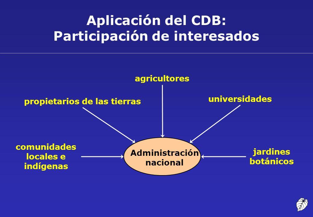 Aplicación del CDB: Participación de interesados