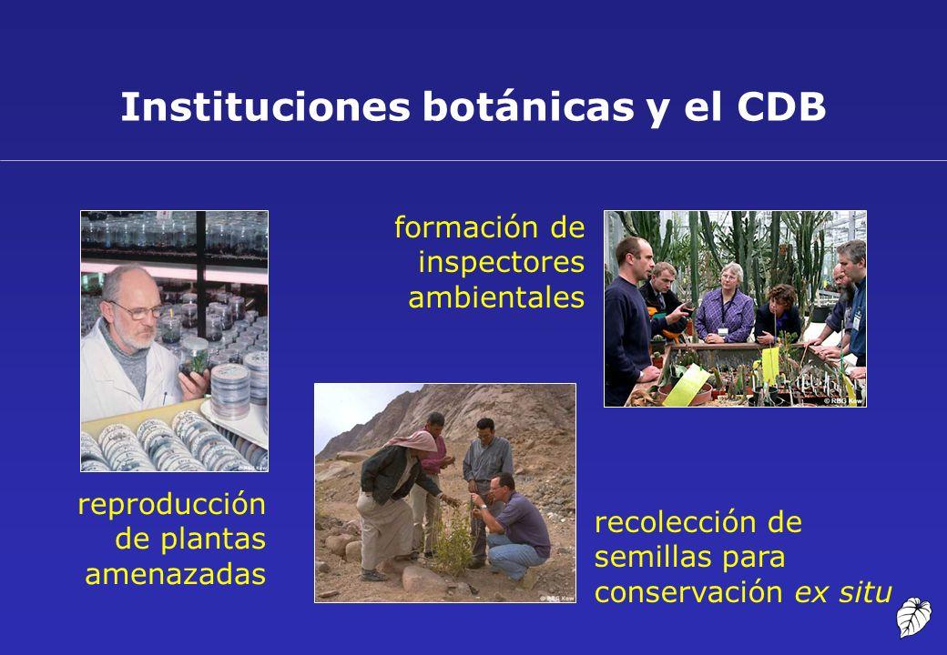 Instituciones botánicas y el CDB