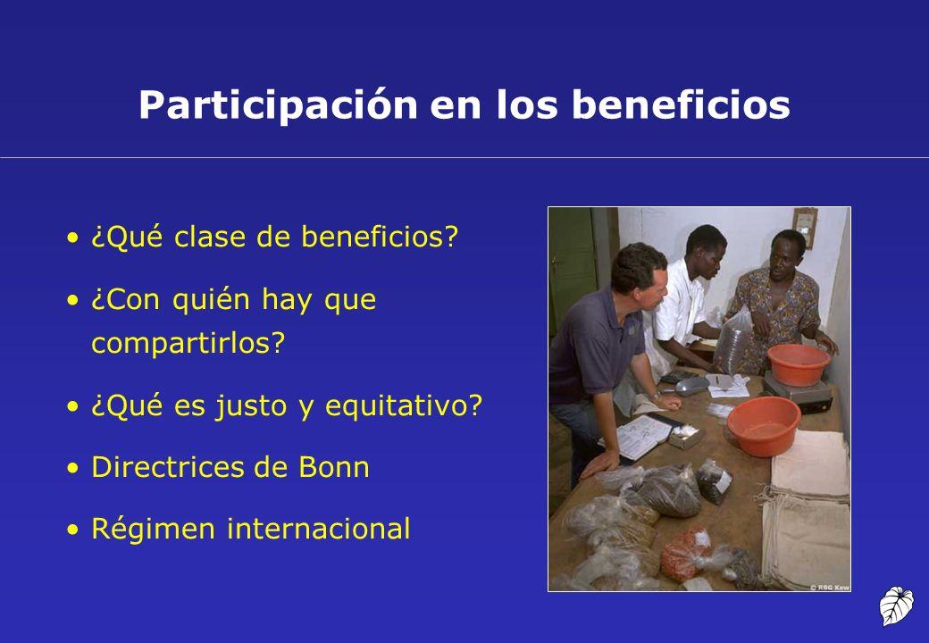 Participación en los beneficios