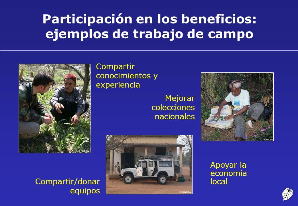 Participación en los beneficios: ejemplos de trabajo de campo